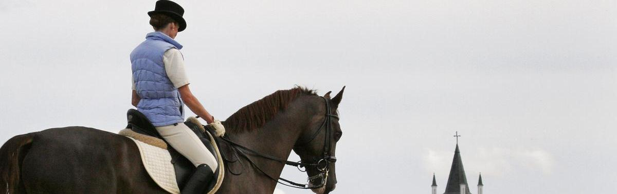 Подарочный сертификат Катание на лошадях Урок верховой  ездыРомантика<br>Научитесь ездить верхом на лошади и станьте опытным мастером в этом деле всего за несколько уроков.<br><br>Номинал: None<br>Тип подарка: Электронный<br>Город (для эмоций): Москва<br>Как воспользоваться?: None<br>Что будет происходить?: None<br>Количество участников: None<br>Сезонность: None<br>Продолжительность: None<br>Где проходит?: None<br>Вид эмоций: None<br>Для кого: None<br>Повод: None