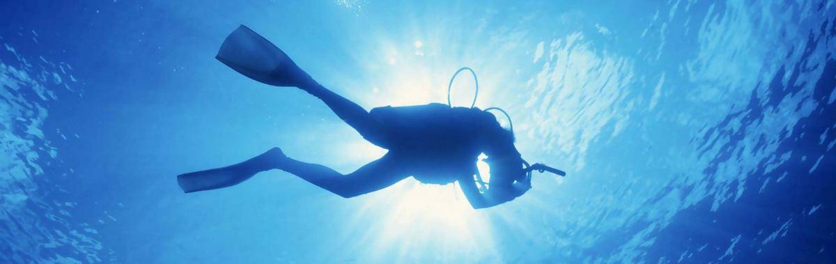 Подарочный сертификат Курс Open Water Diver Referral