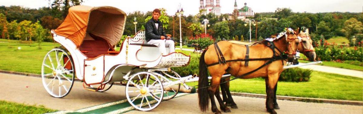 Подарочный сертификат Катание на лошадях Прогулка на бежевом/зеленом экипаже для компанииРомантика<br>Отдохните в любимой компании во время прогулки на экипаже по живописным местам Москвы.<br><br>Номинал: None<br>Тип подарка: Физический<br>Город (для эмоций): Москва<br>Как воспользоваться?: None<br>Что будет происходить?: None<br>Количество участников: 4 и более<br>Сезонность: None<br>Продолжительность: До 3 часов<br>Где проходит?: None<br>Вид эмоций: None<br>Для кого: None<br>Повод: None