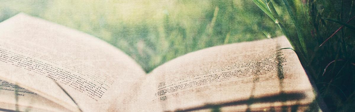 Подарочный сертификат Розыгрыш Книга жизниРозыгрыши<br>Создайте для именинника прекрасную книгу жизни, в которой будут отображены все яркие моменты его жизни, начиная с самого рождения!<br><br>Номинал: None<br>Тип подарка: Физический<br>Город (для эмоций): None<br>Как воспользоваться?: None<br>Что будет происходить?: None<br>Количество участников: 1 участник<br>Сезонность: None<br>Продолжительность: На целый день<br>Где проходит?: None<br>Вид эмоций: None<br>Для кого: None<br>Повод: None